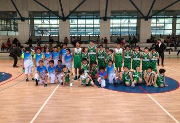 formacion basketba